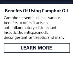 camphor essential oil for the skin